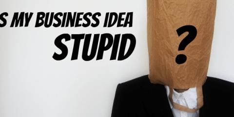 Is My Business Idea Stupid?