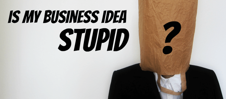 Is My Business Idea Stupid?