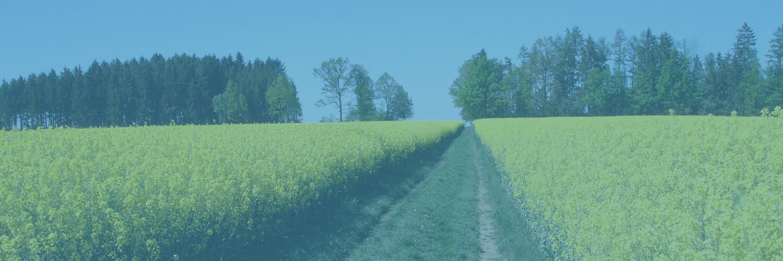 Arable Land Insurance 2